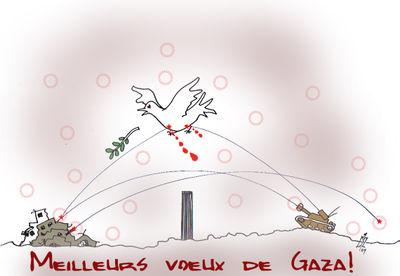 1 Voeux de Gaza 6 01 09