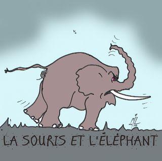 40 la souris et l'éléphant 2 12 10