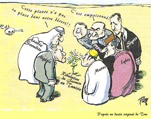 Révolution Tunisienne 20 01 11
