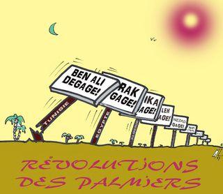 11 Révolutions des palmiers15 02 11