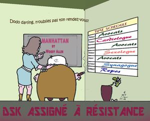 42 DSK assigné à résistance 30 05 11