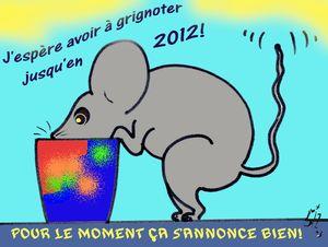41 Souris 2012 30 11 11