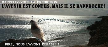 23 PIGEONS  06 10 12