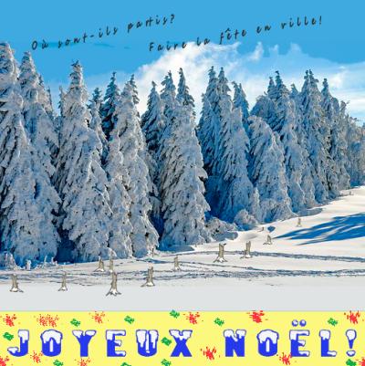 49 Sapins de Noël 20 12 17