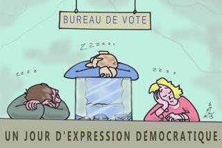 20 JOUR DE VOTE 28 04 15