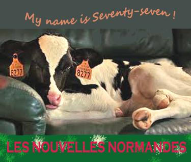 6 Nouvelle Noramande 05 09 18