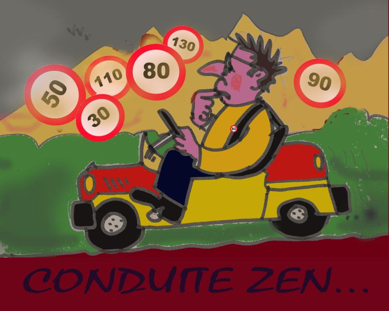 CONDUITE ZEN