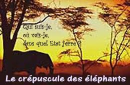 Cpuscule_des_lphants_5_07